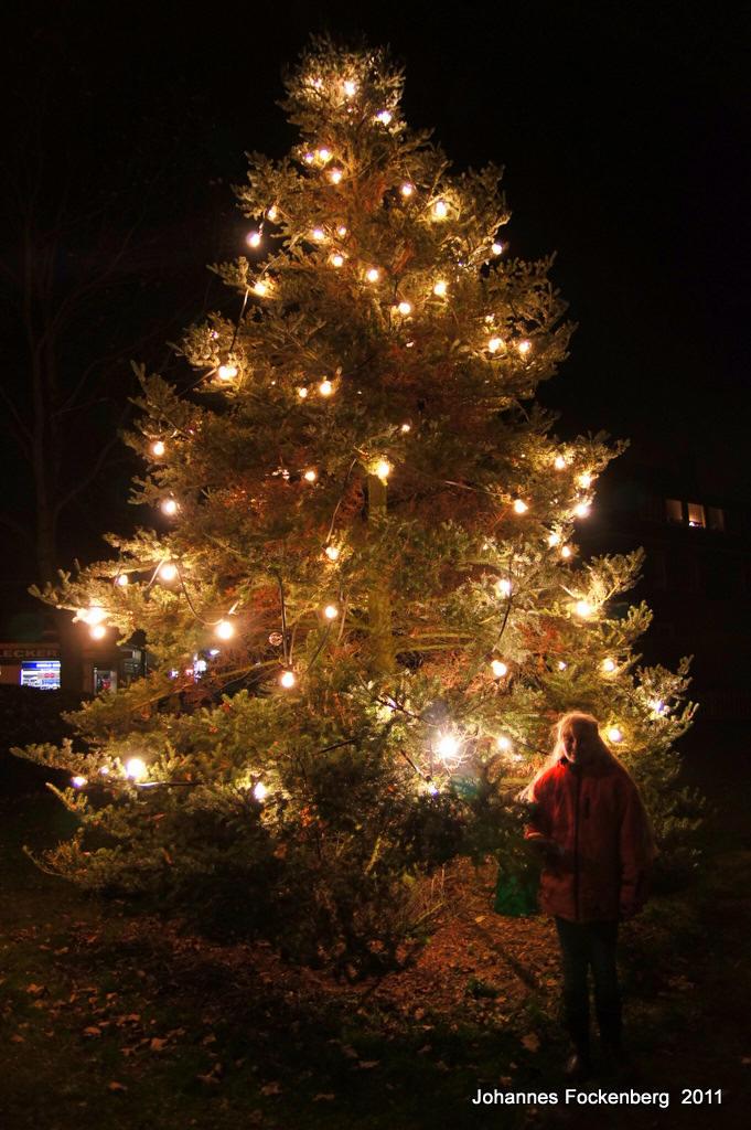 bildergalerie grafenwald weihnachtsbaum aufstellen der. Black Bedroom Furniture Sets. Home Design Ideas